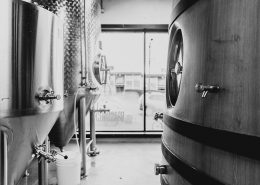 Vancouver Brewery Tours Inc. - Fermentation Tanks at Brassneck Brewery