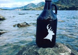 Growler at Callister Brewing