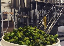 Vancouver Brewery Tours Inc. -Hops at Off the Rail Brewing