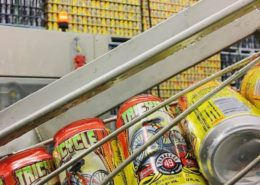 Vancouver Brewery Tours Inc. - Tricycle Radler at Parallel 49 Brewing Company