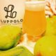 Dine Out Vancouver - Vancouver Brewery Tours - Luppolo Brewing Craft Beer
